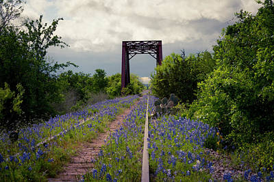 Photograph - Abandoned Tracks by David Morefield
