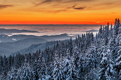 Photograph - Above Ocean Of Clouds by Evgeni Dinev
