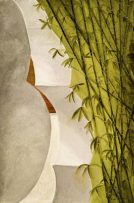Photograph - Abstract Bamboo by Dee Browning
