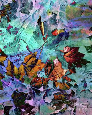 Photograph - Abstract Leaves by Marcia Lee Jones