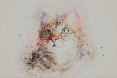 Watercolor Pet Portraits Painting - Abyssinian Cat by ArtMarketJapan