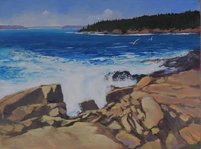 Acadia Surf Original