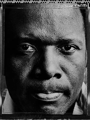 Photograph - Actor Sidney Poitier Portrait Session by George Rose