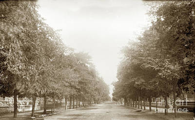 Photograph - Adeline Street, Oakland, Circa 1887 by California Views Mr Pat Hathaway Archives