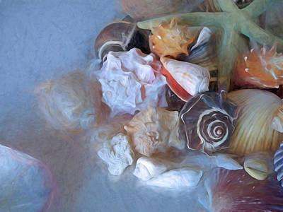 Mixed Media - Adjacent Shells With Chalk Effect 24 by Lynda Lehmann
