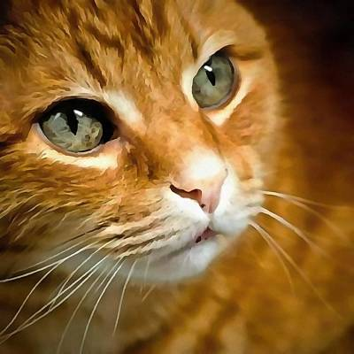 Painting - Adorable Ginger Tabby Cat Posing by Taiche Acrylic Art