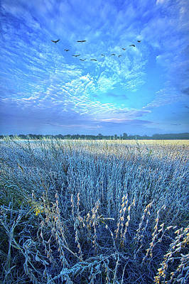 Royalty-Free and Rights-Managed Images - Adversity Tempers the Human Heart to Discover its Real Worth by Phil Koch
