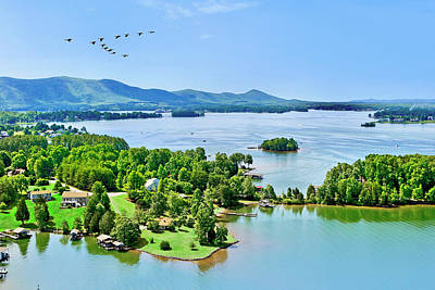 Photograph - Aerial Geese, Smith Mountain Lake by The American Shutterbug Society
