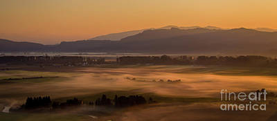 Abstract Male Faces - Aerial Skagit Photography Morning In the Fields by Mike Reid