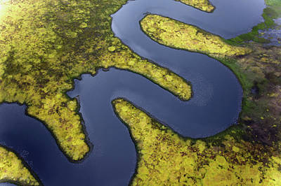 Photograph - Aerial View Of Serpentine River by Adam Jones