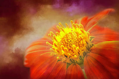 Spot Of Tea Royalty Free Images - Aflame Royalty-Free Image by Jim Love