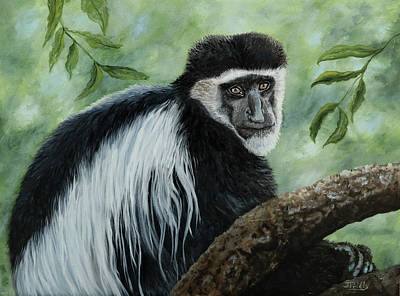 Painting - African Colobus Monkey by Jan Priddy
