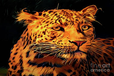 Painting - African Leopard A18237 by Ray Shrewsberry