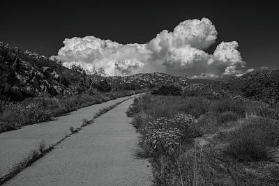 Photograph - Afternoon, Old Road, Black And White by TM Schultze