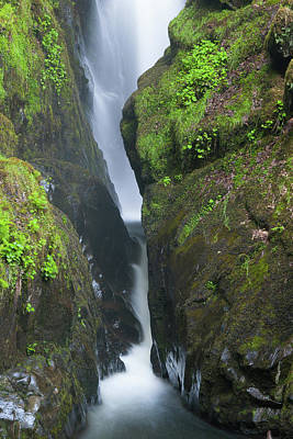 Aira Force Wall Art - Photograph - Aira Force Waterfall In The Lake District. England.  by Radomir Rezny