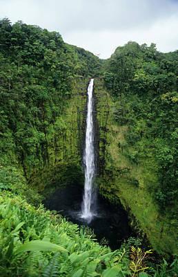 Photograph - Akaka Falls, Hawai`i by Stephanhoerold