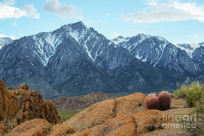 Photograph - Alabama Hills by Michael Ver Sprill