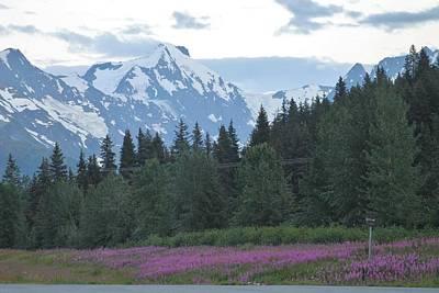 Wall Art - Photograph - Alaska Mt Range by Don Small Jr