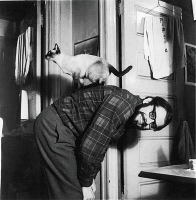 Photograph - Allen Ginsberg & Cat At Home by Fred W. Mcdarrah