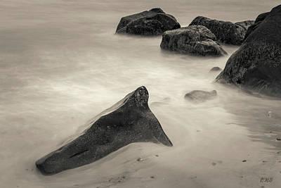 Photograph - Allens Pond Xxiii Toned by David Gordon