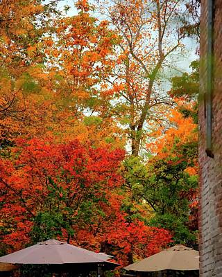 Photograph - Alley Fall Color by Jerry Sodorff
