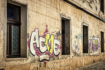 Photograph - Alley Graffiti And Windows - Romania by Stuart Litoff