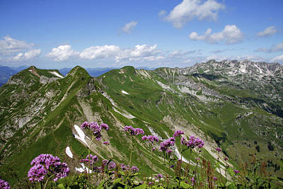 Scenic Photograph - Allgäu Alps With Nebelhorn by Hans-peter Merten