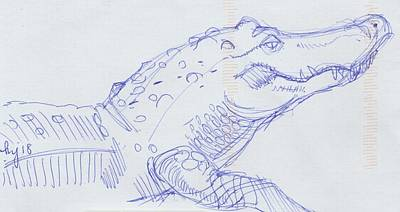 Drawing - Alligator Sketch  by Mike Jory