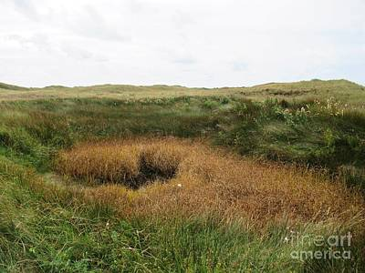 Photograph - Along A Path Near De Muy On Texel by Chani Demuijlder