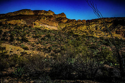 Photograph - Along The Apache Trail by Roger Passman