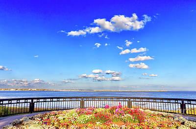 Photograph - Along The Cooper River Charleston by John Rizzuto