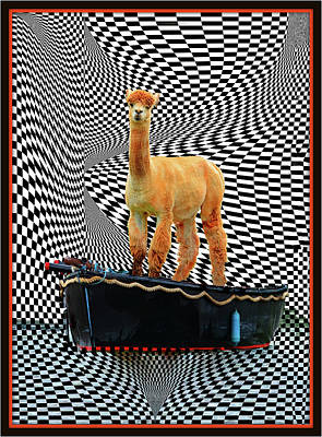 Digital Art - Alpaca On A Boat Ride by Constance Lowery