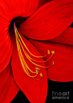 Painting - Amaryllis 2 by Rachel Lowry