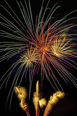Photograph - Amazing Fouth Of July Fireworks by Garry Gay