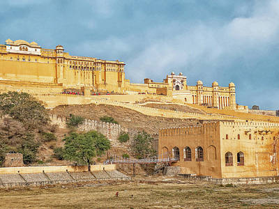 Animals Royalty-Free and Rights-Managed Images - Amer Fort, Jaipur by Photos By Pharos