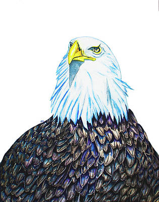 Wall Art - Painting - American Eagle by Patrizia K Ingram