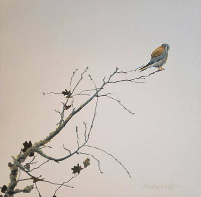 Art Print featuring the painting American Kestrel by Peter Mathios
