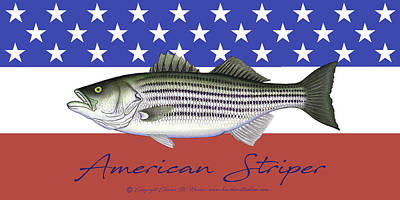 Mixed Media - American Striper Patriotic Striped Bass by Charles Harden