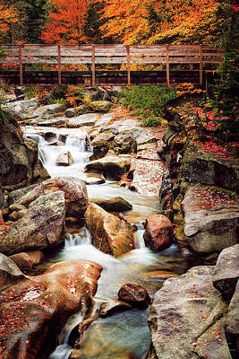 Photograph - Ammonoosuc River, Autumn by Jeff Sinon