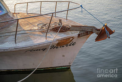 Photograph - Amy Marie - Pleasure Boat by Dale Powell