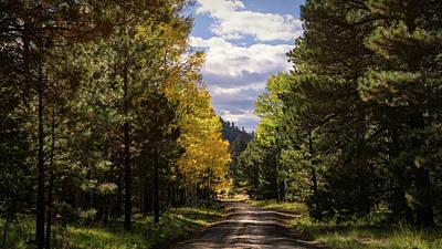 Photograph - An Autumn Drive  by Saija Lehtonen