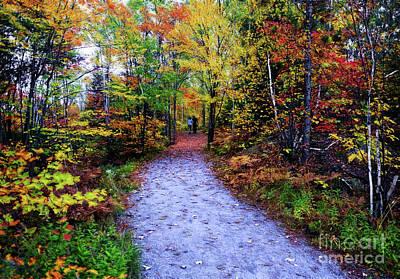 Photograph - An Autumn Walk by Elaine Manley