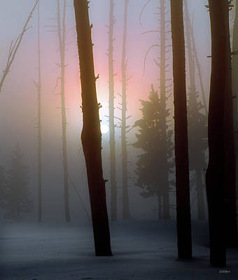 Photograph - An Etheral Winter Forest Sunrise by Leland D Howard