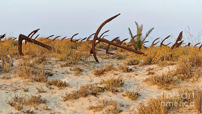 Photograph - Anchors In Barril Beach by Angelo DeVal