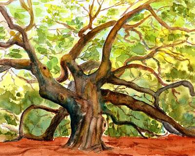 Painting - Angel Oak Tree South Carolina by CarlinArt Watercolor