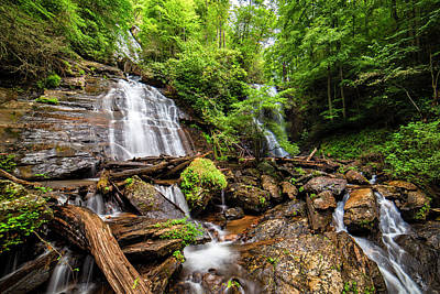 Photograph - Anna Ruby Falls by Andy Crawford