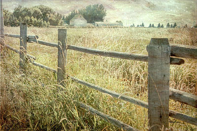 Digital Art - Another Fence by Ramona Murdock