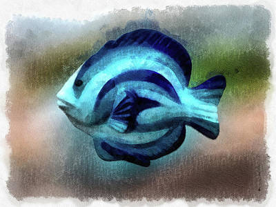 Photograph - Another Single Angel Fish by Leslie Montgomery