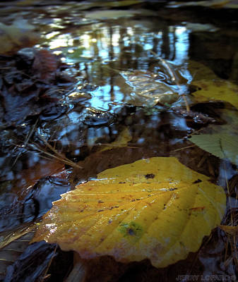 Autumn Digital Art - Another World Beneath by Jerry LoFaro
