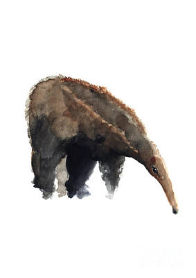 Painting - Anteater Watercolor Painting Brown Black Grey Animal Poster by Joanna Szmerdt